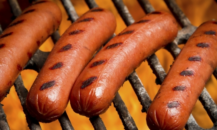 BBQ Dog